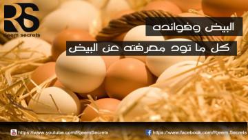 فوائد البيض: كل ما تود معرفته عن البيض