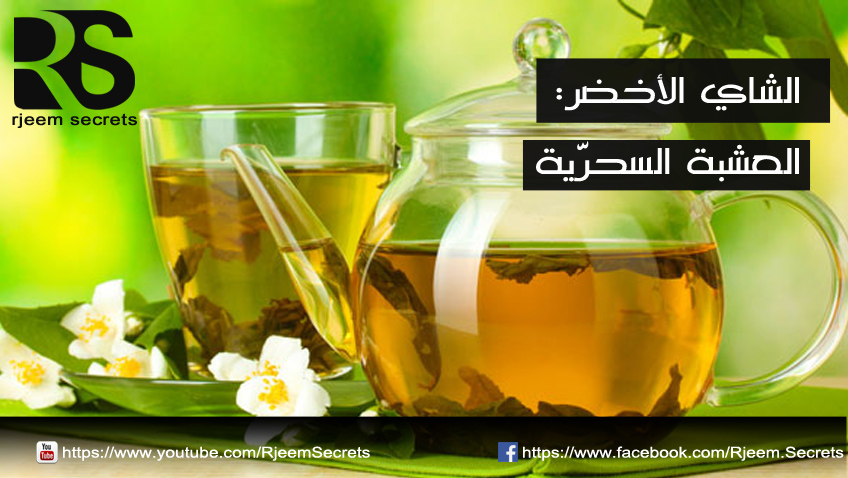 الشاي الاخضر والرجيم: ما هي فوائد الشاي الاخضر وما هو دوره في الرجيم
