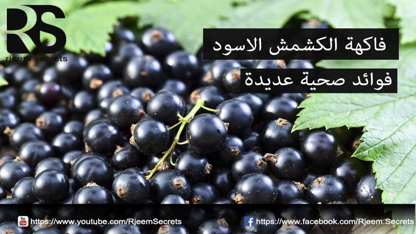 الكشمش الاسود : فاكهة الكشمش الاسود معالجة لامراض عديدة