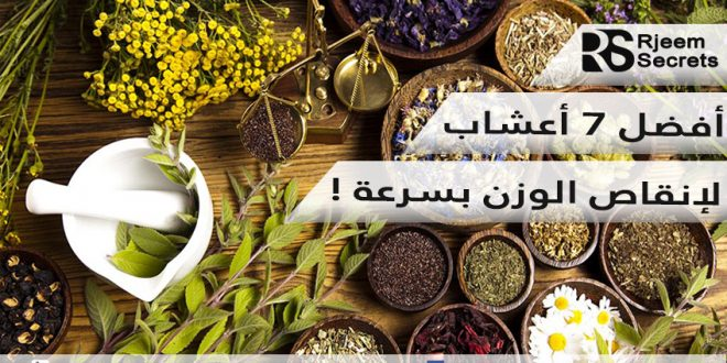 أعشاب للتنحيف بدون رجيم : أفضل 7 أعشاب لانقاص الوزن