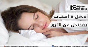 اعشاب تساعد على النوم : 6 أعشاب طبيعية تخلصّكم من الأرق فوراً
