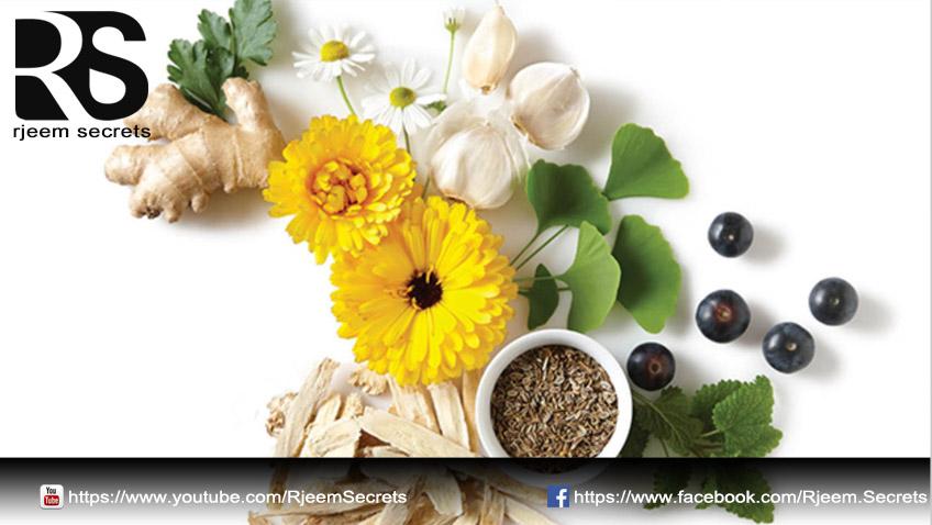 5 اعشاب تساعد على تنظيف الرحم من الأوساخ والشوائب